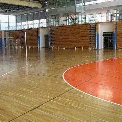 Dvorana Vrbanska