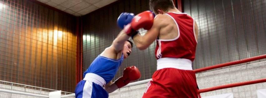 DUP v boksu